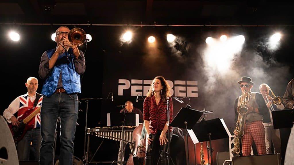 Pee Bee en concert à Verrière-le-Buisson 2020
